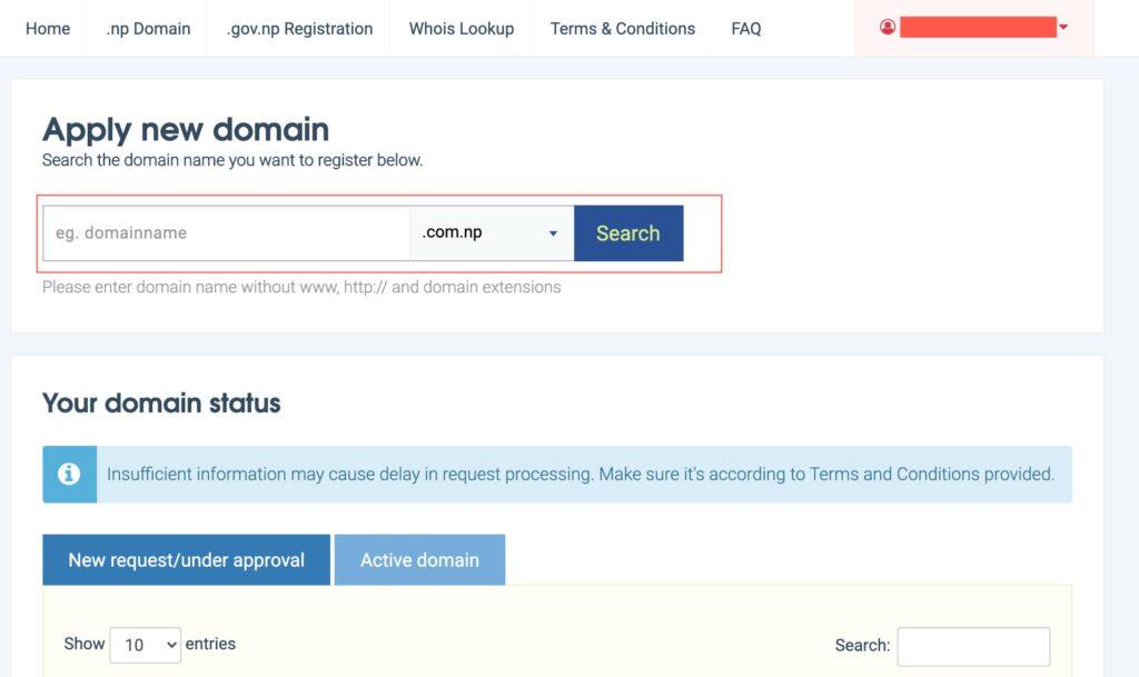 Check domain status